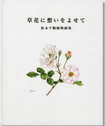 Bd_matsumoto01